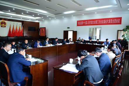 凤庆县人大常委会领导以代表身份参与各代表团讨论