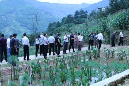 郭大寨乡组织人大代表在人代会期间开展视察活动