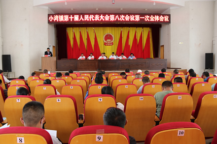 小湾镇召开第十届人民代表大会第八次会议