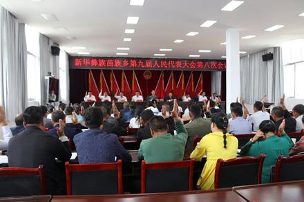 新华乡召开第九届人民代表大会第八次会议