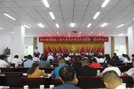 勐佑镇召开第四届人民代表大会第八次会议